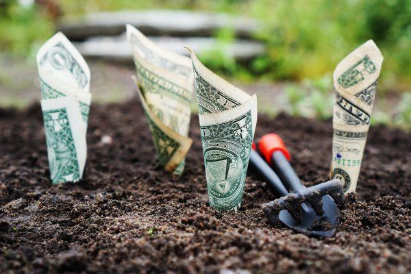 grow your money image